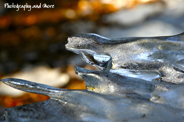 photograph of natural ice sculpture - photography and more ct
