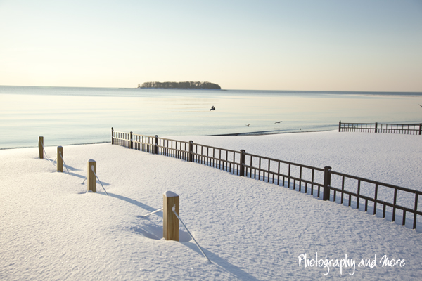 Charles Island in the snow | CT photographer Milford