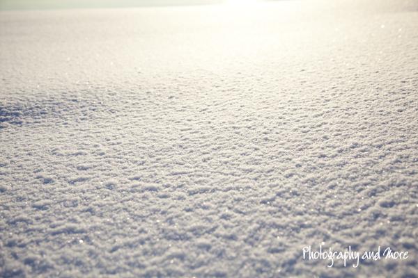 snow close up   Milford CT photographer