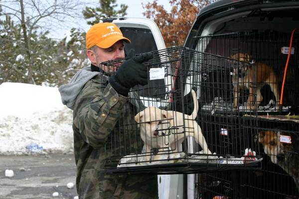 Rick unloading one of the puppies