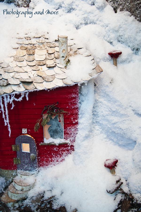 Closeup photo Anthropology window display NYC Christmas 2010