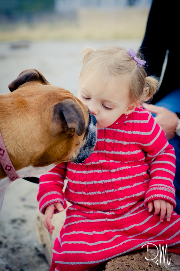 Little girl kissing her boxer dog | CT Dog and Children Photographer